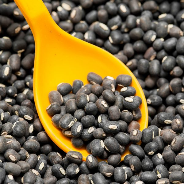 black whole urad 1